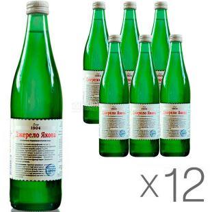 Джерело Якова, 0,5 л, упаковка 12 шт., Вода минеральная слабогазированная, стекло