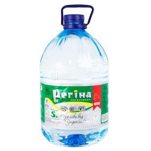Regina, 5 l, Still water, Mineral, PET, PAT