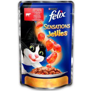 Felix Sensations Jellies, 100 г, Корм  для взрослых котов, с говядиной в желе с томатами