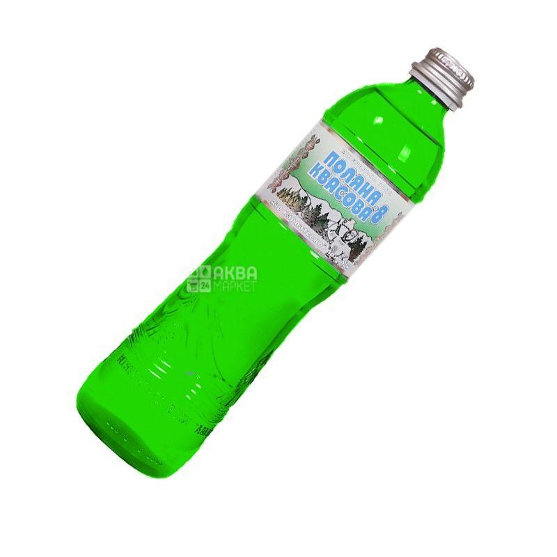 Поляна Квасова, 0,5 л, Вода минеральная сильногазированная, стекло